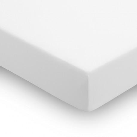 Drap housse coton 105 BLANC